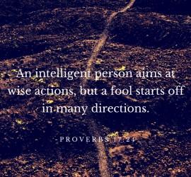 Proverbs 17-24